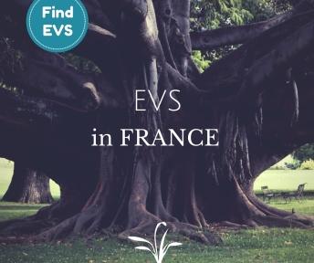 EVS project France European Voluntary Service Find EVS
