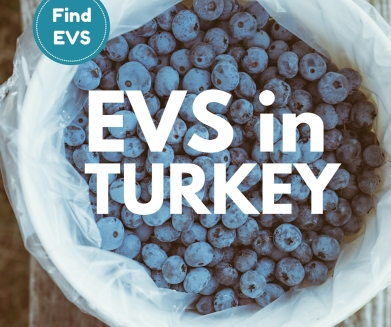 Turkey call for EVS project vacancy