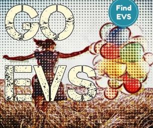 EVS Vacacny Find EVS 1