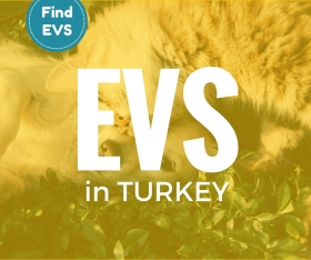 Turkey call for EVS project vacancy 2