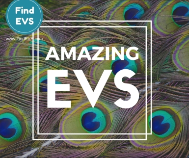 amazing-evs-find-evs-vacancy-5