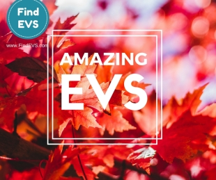 amazing-evs-find-evs-vacancy-6