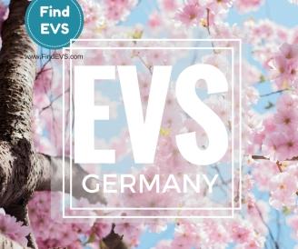 germany-evs-vacancy-find-evs-2